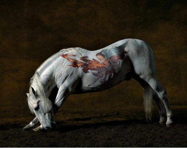 comenius_horse2.jpg